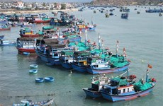 Estrategia del desarrollo sostenible de la economía marítima de Vietnam hasta 2030