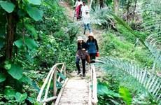 Binh Thuan desarrolla productos turísticos asociados a la agricultura sostenible