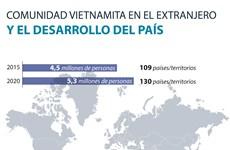 Comunidad vietnamita en el extranjero y el desarrollo del país