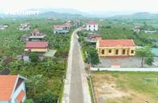 (Video) Quang Ninh cambia su fisonomía después de 10 años de modernización rural