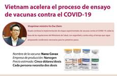 Vietnam acelera el proceso de ensayo de vacunas contra el COVID-19