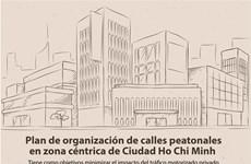 Plan de organización de calles peatonales en zona céntrica de Ciudad Ho Chi Minh