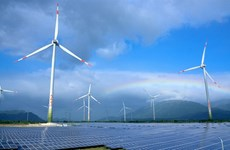 Ninh Thuan por convertirse en centro de energías renovables de Vietnam
