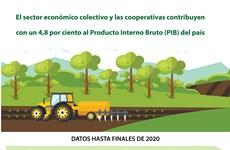 El sector económico colectivo y las cooperativas contribuyen  con un 4,8 por ciento al Producto Interno Bruto del país