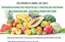 Exportaciones de vegetales y frutas de Vietnam alcanzan mil 350 millones de dólares