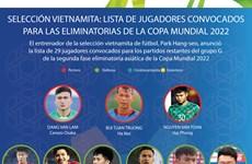 Anuncian lista de jugadores vietnamitas para las eliminatorias de la Copa Mundial 2022