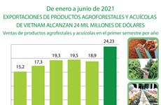Ventas de productos agroforestales y acuícolas de Vietnam alcanzan 24 mil millones de dólares