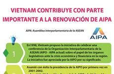 Vietnam contribuye con parte importante a la renovación de la AIPA