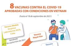 Ocho vacunas aprobadas para su uso de emergencia en Vietnam