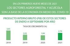 Sectores agroforestal y acuícola de Vietnam registraron crecimiento en los primeros nueve meses de 2021