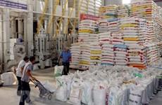 Exportaciones de arroz vietnamita a Filipinas superan mil millones de dólares