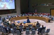 Ratifica Vietnam apoyo a equidad de género en proceso de paz en Sahel