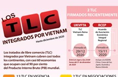 TLC integrados por Vietnam