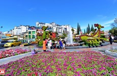 Da Lat, reino vietnamita de las flores para la exportación
