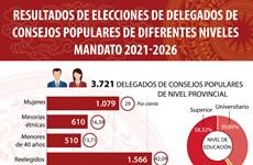 Estructura de delegados de consejos populares de diferentes niveles