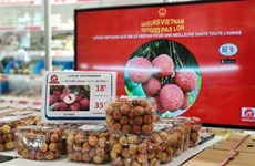 Comercio en línea allana camino para llevar productos vietnamitas al mundo