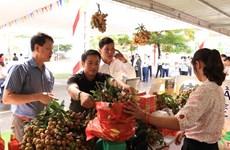 Comercio electrónico: canal de promoción del longan vietnamita