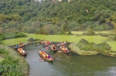 Explotar la belleza prístina del parque de aves Thung Nham en Vietnam
