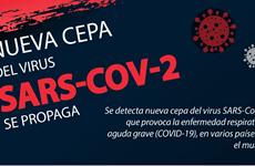 Se propaga nueva cepa del virus SARS- CoV-2 en el mundo