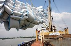 Exportaciones de arroz de Vietnam disfrutan de grandes oportunidades en 2021
