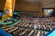 Preside Vietnam debate de alto nivel del Consejo de Seguridad de la ONU
