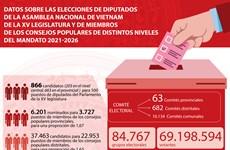 Datos principales sobre elecciones parlamentarias de XV legislatura en Vietnam