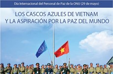 Evidencian los casos azules de Vietnam aspiración por la paz