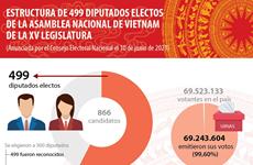 Estructura de diputados electos del Parlamento de Vietnam de XV legislatura