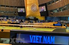 Éxito de Vietnam en Mes presidencial de CSNU: impronta de un miembro responsable