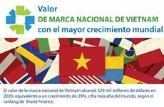 Vietnam registra el mayor crecimiento del valor de la marca nacional en el mundo