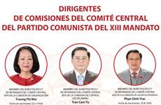 Los dirigentes de las comisiones del Comité Central del Partido Comunista de Vietnam