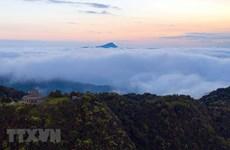 Parque nacional de Bach Ma, tesoro de biodiversidad de Vietnam
