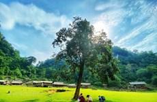 """Turismo de Vietnam, listo para la """"reapertura del cielo"""""""