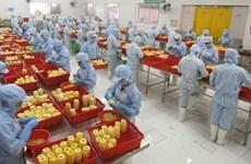 Comercio exterior de Vietnam supera 316 mil millones de dólares en primer semestre