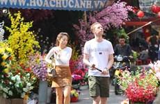 [Fotos] Mercado de flores Hang Luoc, en el casco antiguo de Hanoi, víspera de las fiestas del Tet