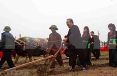 [Fotos] Vicepremier vietnamita asiste a festival para promover producción agrícola