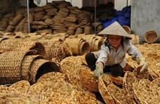[Fotos] Artesanos vietnamitas crean artículos únicos de plantas acuáticas camalote