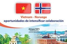 [Info] Vietnam – Noruega: oportunidades de intensificar colaboración