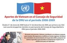 [Info] Aportes de Vietnam en el Consejo de Seguridad de la ONU en el período 2008-2009