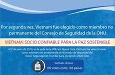 [Info] Vietnam fue elegido como miembro no permanente del Consejo de Seguridad de la ONU