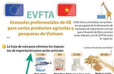 [Info] Aranceles preferenciales de UE para varios productos agrícolas y pesqueros de Vietnam