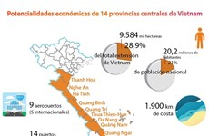 [Info] Potencialidades económicas de 14 provincias centrales de Vietnam