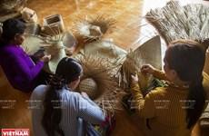 [Foto] Artesanía de juncia gris en Kien Giang