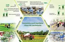 [Info] Economía rural mantiene ritmo de crecimiento