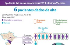[Info] Epidemia del nuevo coronavirus 2019-nCoV en Vietnam
