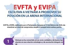 [Info] EVFTA y EVIPA promueven posición de Vietnam en la arena internacional