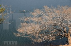 [Foto] Belleza de la provincia central Gia Lai