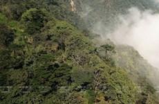 [Foto] Parques patrimoniales reconocidos por ASEAN en Vietnam