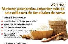 [Info] Vietnam exportaría unos seis millones de toneladas de arroz