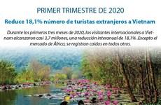[Info] Reducen 18,1% número de turistas extranjeros a Vietnam